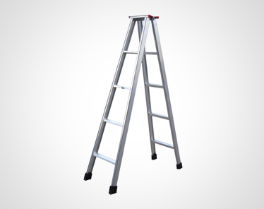 ALU LADDER